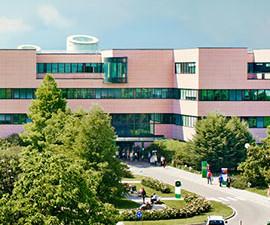 humanitas university milan
