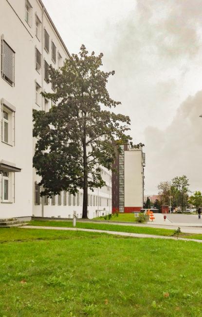 estudiantes-Medical-University-Bialystok